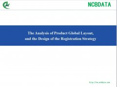 The Analysis of Product Global Layout, and the Design of the Registration Strategy