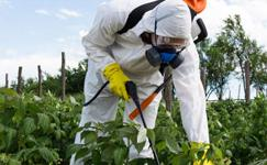 Pesticide License Must be Applied for Before August 1. 800,000 Agricultural Dealers Face a Major Shuffle