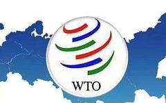 WTO Issues 2014 Trade and Tariff Statistics